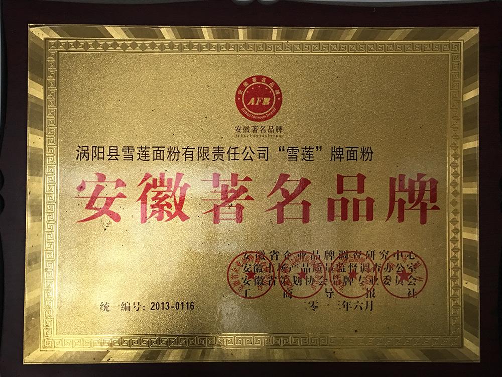 安徽著名品牌